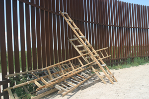 Border ladders (Credit: Scott Nicol)