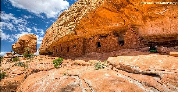 Stand Up for Bears Ears