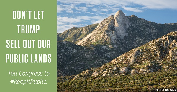Don't let Trump sell out our public lands!